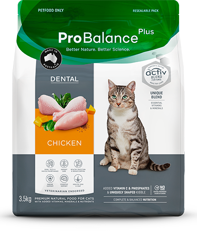 Care Range Dry Cat Food Dental