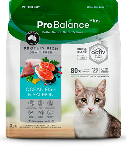Protein Rich Dry Cat Food Adult Ocean Fish & Salmon
