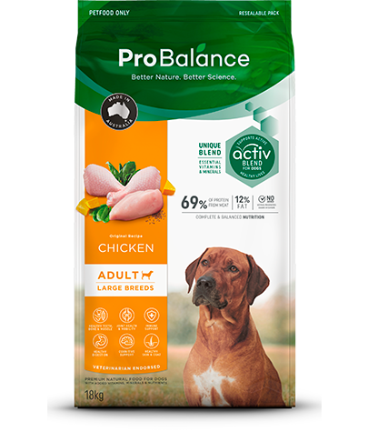 Premium Dog Dry Food Large Breed Adult Chicken