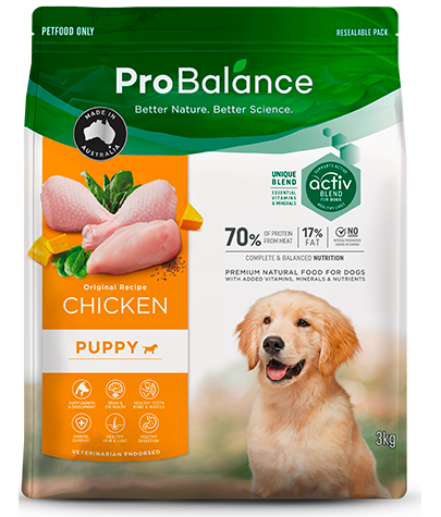 Premium Dog Food Dry Puppy Chicken