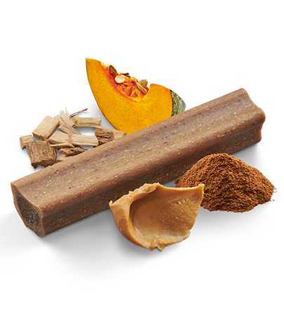 Dental Long Lasting Treats – Pumpkin & Cinnamon